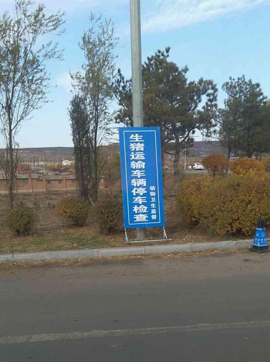 """省道某十字路口处立着""""生猪运输车辆停车检查""""的牌子,没有工作人员"""